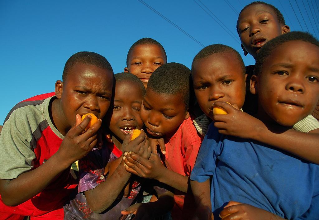 Nectarine boys